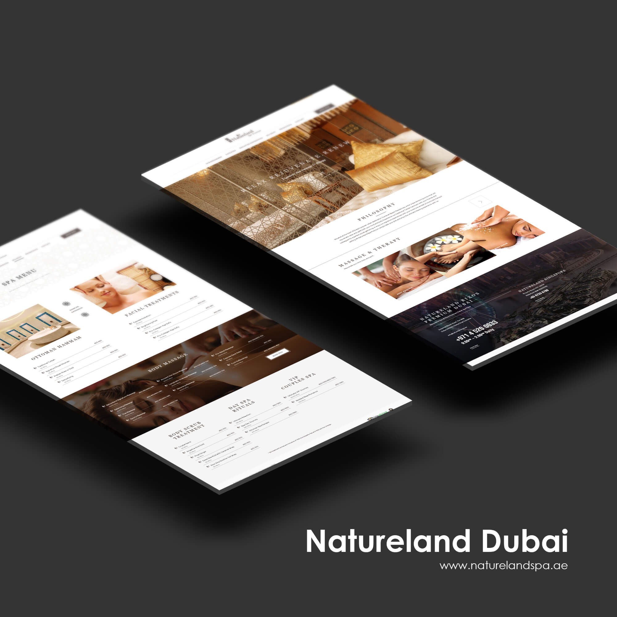 Singapore best web design natureland web design