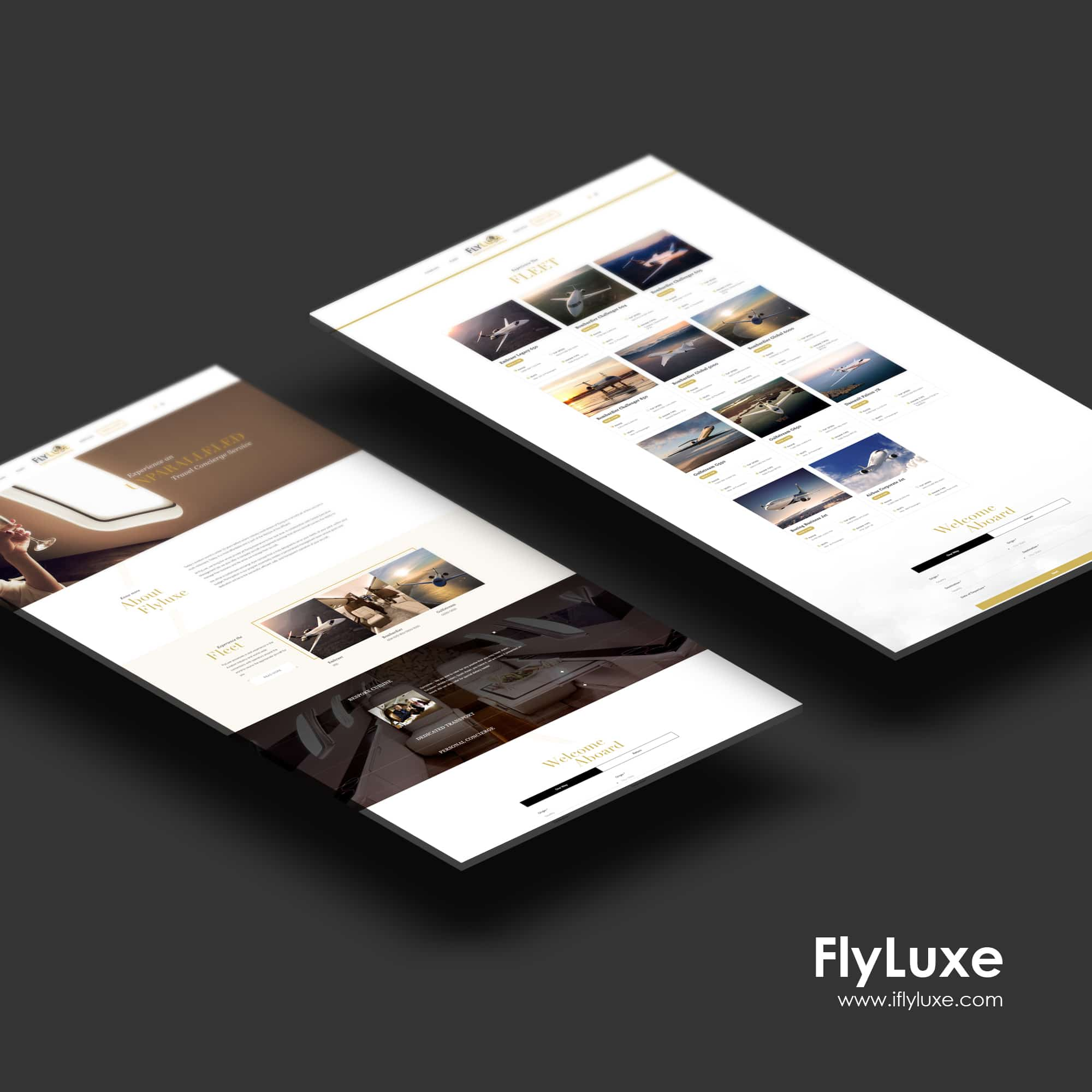 Singapore best web design flyluxe web design